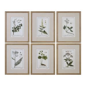 Green Floral Botanical Study - 22.63 inch Floral Print (Set of 6)