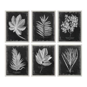 Foliage - 33.75 inch Framed Print (Set of 6)