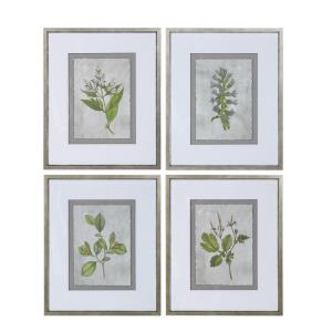 Stem Study - 24.25 inch Framed Print (Set of 4) - 20.25 inches wide by 0.88 inches deep