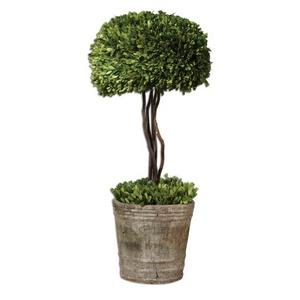 "Tree Topiary - 33"" Preserved Boxwood"