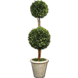 "Sphere Topiary - 36"" Sphere Preserved Boxwood"