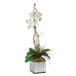 Kaleama - 33 inch Orchids - 15 inches wide by 10 inches deep