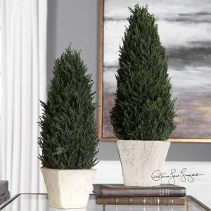 "Cypress - 18"" Topiary (Set of 2)"