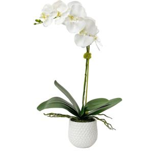 Cami - 24 inch Orchid