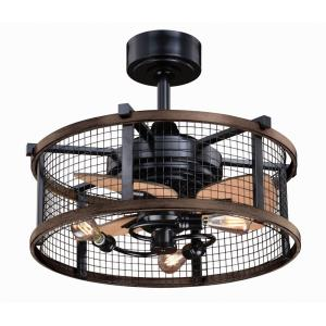 Humboldt - 21 Inch Ceiling Fan with Light Kit