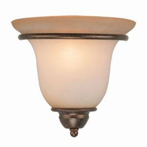 Monrovia 1-Light Wall Sconce in Transitional and Flush Style 9.5 Inches Tall and 10 Inches Wide