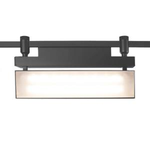 "HM1 - 14"" 42W 2700K 1 LED Flexrail Wall Washer"